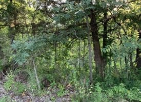 1 acre building lot for sale in rural Van Buren County, IA